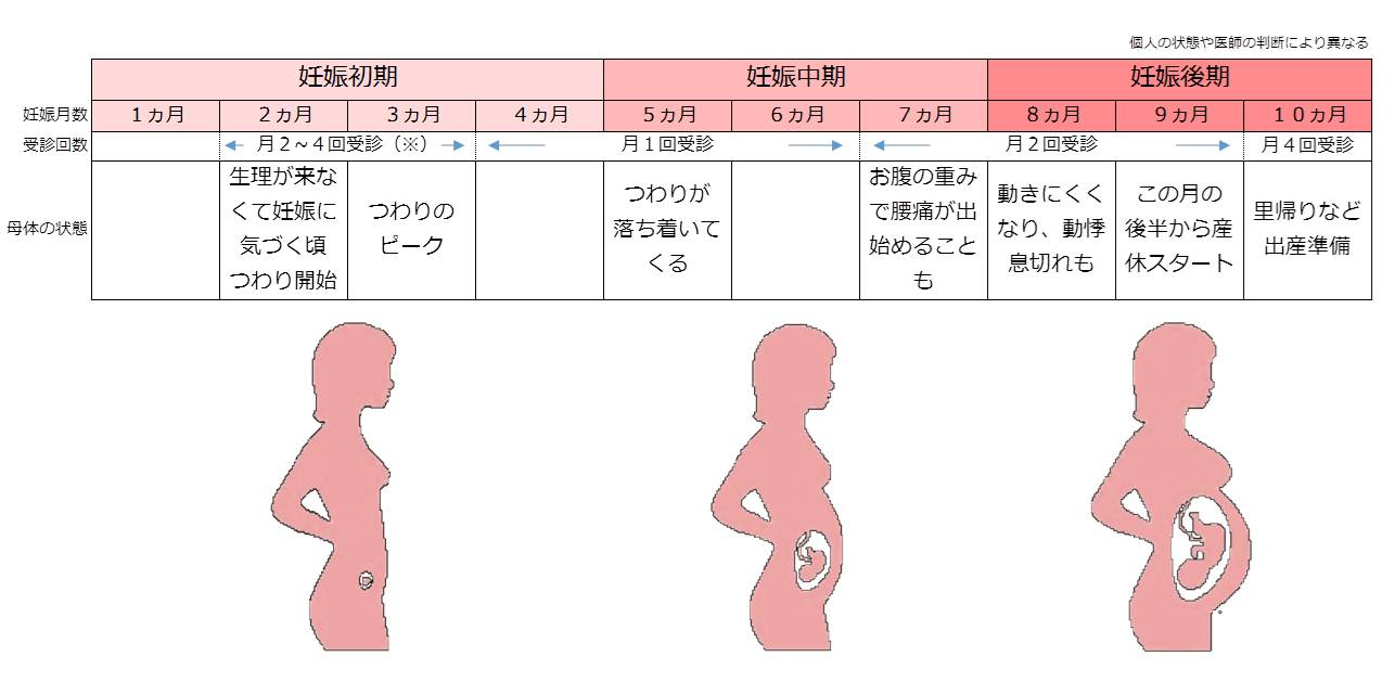 チェック リスト 妊娠